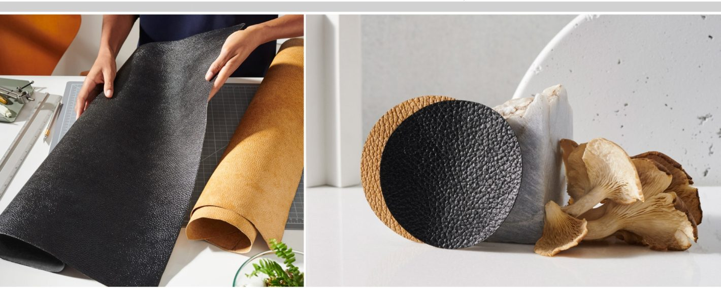 Innovators make leather from mushrooms, flowers, and cacti