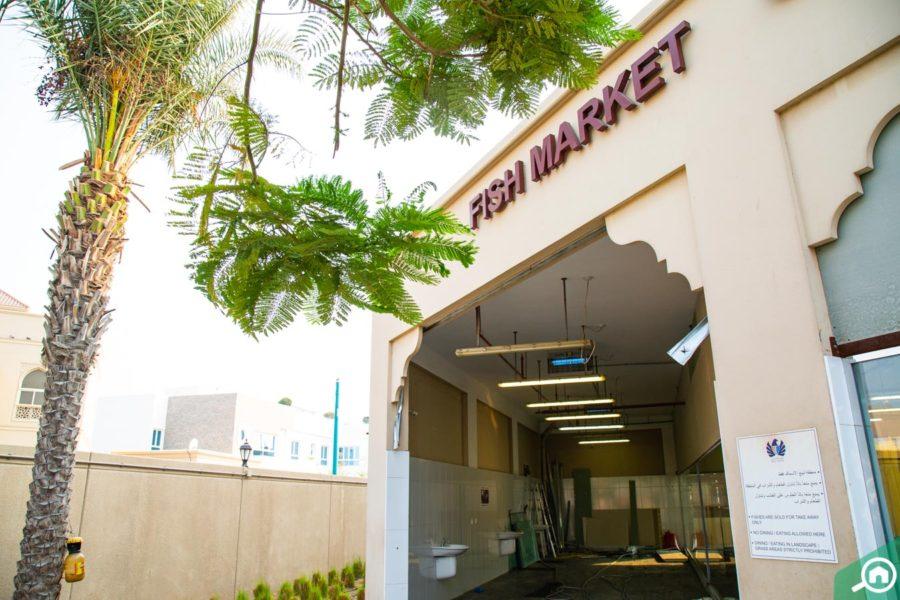 Let's visit Dubai Eco Farms