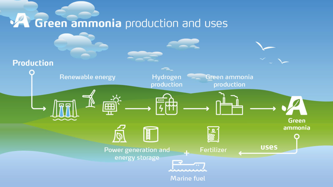 Oman's maiden green ammonia project plans firm up